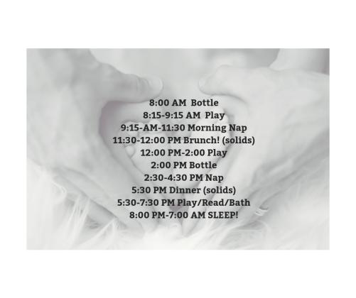 8_00 AM Bottle8_15-9_15 AM Play9_15-AM-11_30 AM Morning Nap11_30-12_00 PM Brunch! (solids)12_00 PM-2_00 PM Play2_00 PM Bottle2_30-4_30 PM Nap5_30 PM Dinner (solids)5_30-7_30 PM PlayRe